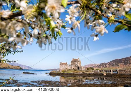 The Eilean Donan Castle With Spring Tree Against Highlands In Scotland