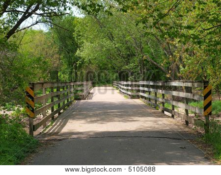 Wood Bridge In Spring