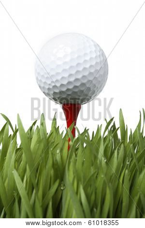 Golf ball on red tee in grass on white background
