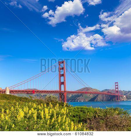Golden Gate Bridge San Francisco from Presidio in California USA