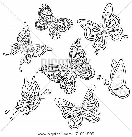 Set various butterflies, monochrome contours on a white background, vector poster