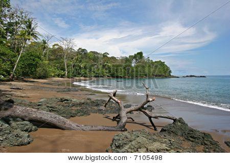 Walking on a rocky beach