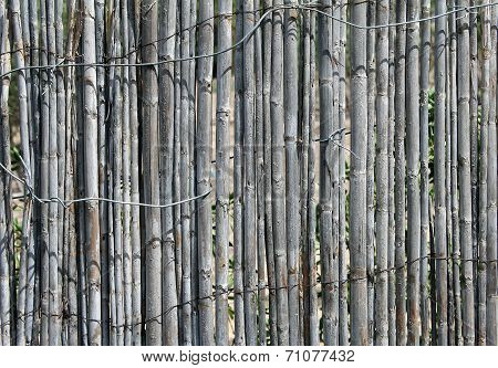 Old gray wooden fence