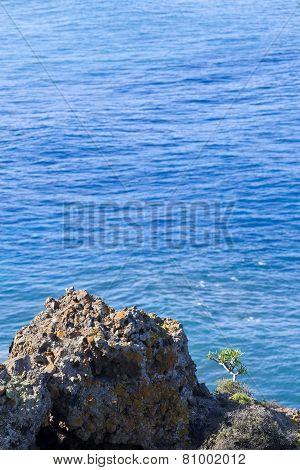 View of Atlantic Ocean in nature reserve Rambla de Castro by Los Realejos Tenerife Canary Islands Spain. poster