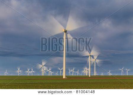 Wind Power Turbines In  Dobrogea, Romania