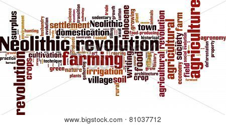 Neolithic Revolution word cloud. Isolated on White poster