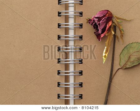 red rose and notebook