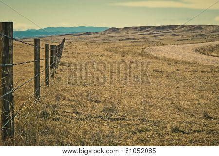 Beside the drift fence next to open range.
