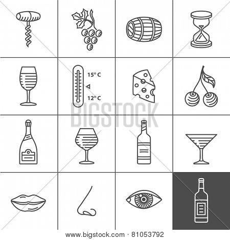 Wine icons set - procurement, storage, cellar rotation and tasting. Vector icons for wine labels. Simple lines series