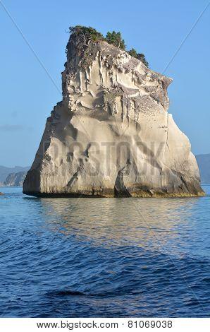 Te Whanganui-a-hei (cathedral Cove) Marine Reserve