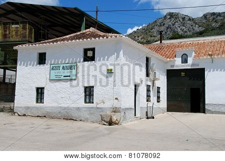 Olive oil press factory.