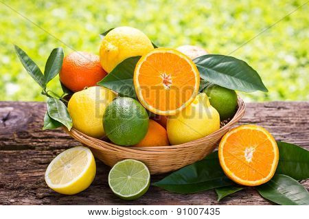 Citrus fruits in the basket