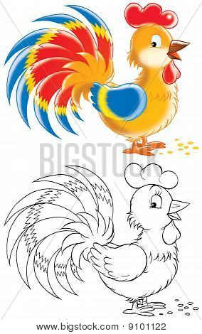 Isolated clip-art of a rooster (2 versions of the illustration) poster
