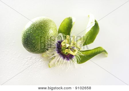 Passion flower (passiflora incarnata) and maracuja fruit isolated over white with water drops poster