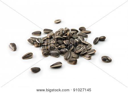 Sunflower (Helianthus annuus) seeds, isolated on white. Focus on center of heap.