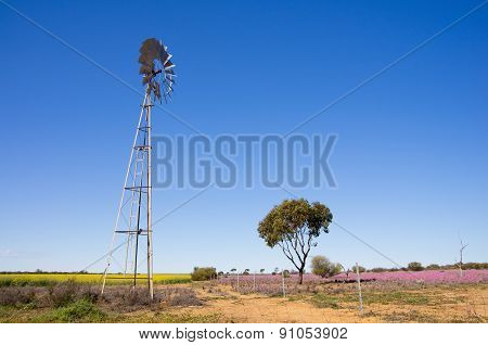 multi-bladed windpump