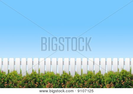 White Fence And Shrubs On Blue Sky