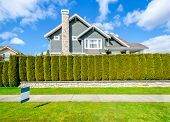 Beautiful house behind green hedge fence with empty for sale, lease, rent sign. Landscape trimming design. poster
