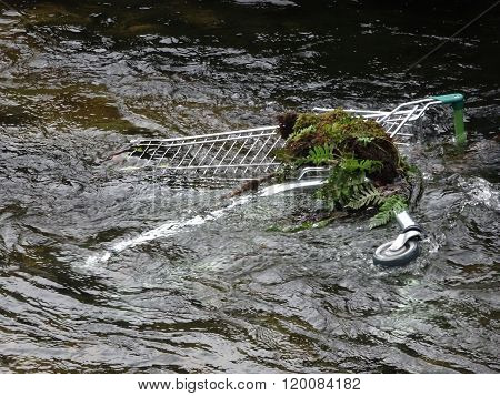 Shopping Trolley In River