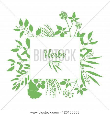Fresh herbs store emblem. Green square frame with collection of plants. Silhouette of branches isola