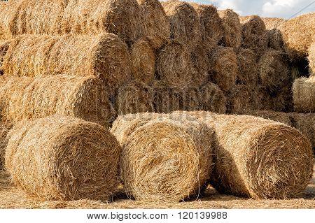 Storage Of Hay