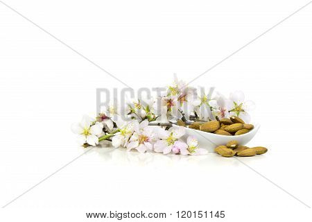 Raw almonds with flowers