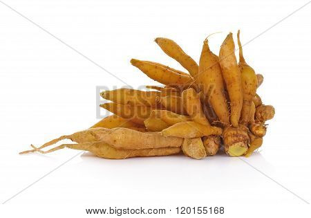 rhizome finger root on white background vegetable