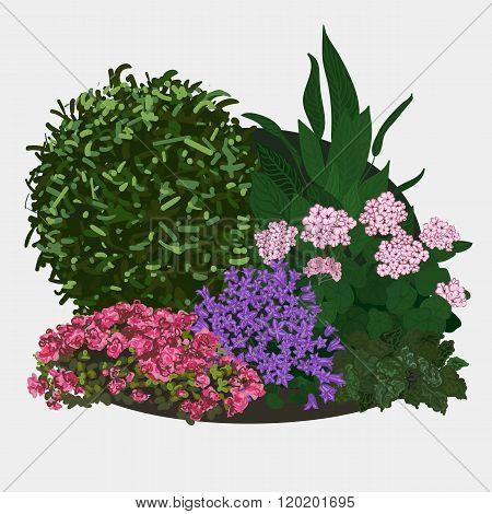 Illustration of Garden flower bed