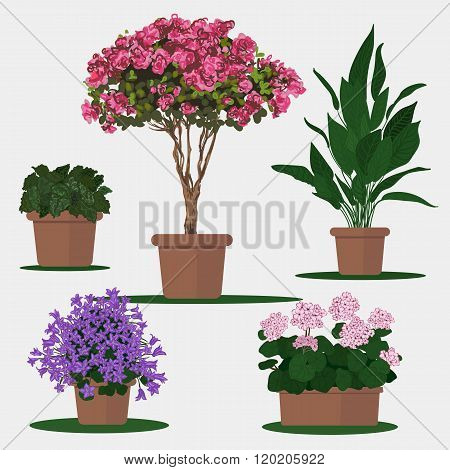 Illustration of flowers in pot.