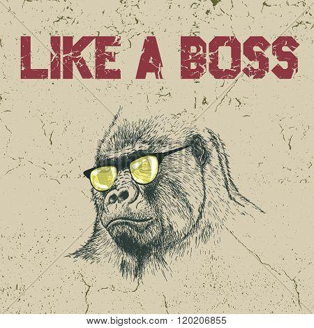 Gorilla in the yellow sunglasses