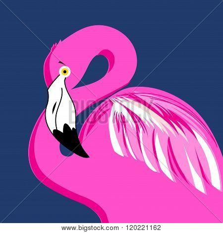 Vector Portrait Of Pink Flamingos