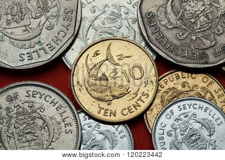 Coins of the Seychelles. Tuna fish depicted in the Seychellois 10 cents coin.