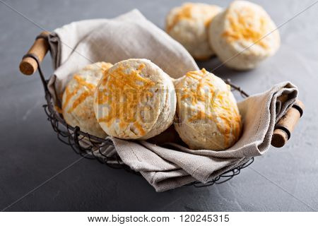 Homemade buttermilk biscuits with cheddar cheese