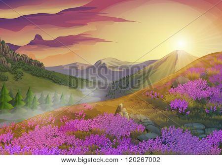 Lavender, summer evening landscape, vector background