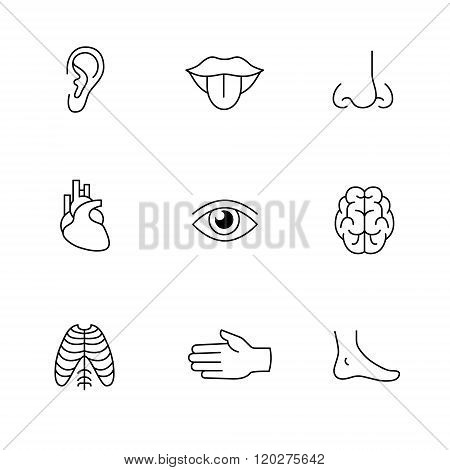 Medical icons thin line art set. Human organs