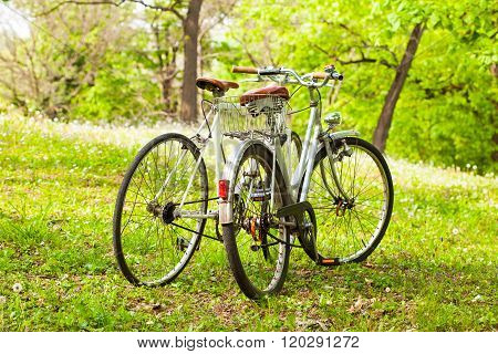 Two old bicycles