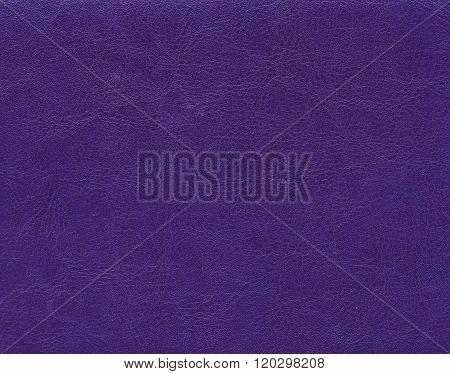 Violet Leather Texture.