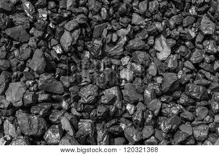 New Zealand Black Coal