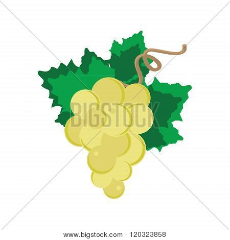 White Grape With Leaf
