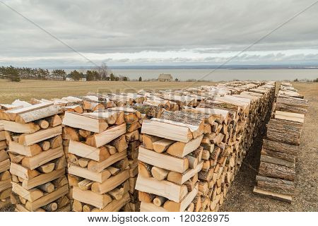 Four Stacks Of Firewood