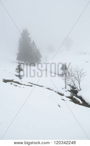 Winter Weather In Mountains With Sleet