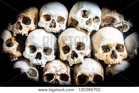 Pile Of Skeleton Heads Laid On Top Of Each Other.
