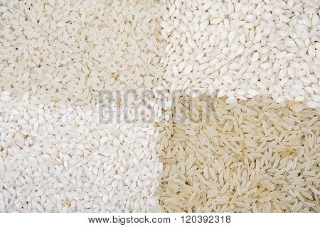 Various Color And Shape Varieties Of Rice