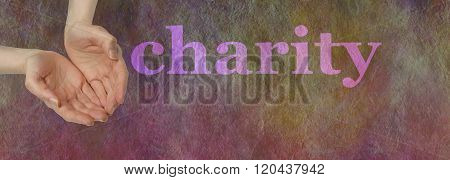 Our Charity Needs your Donation - wide banner with a woman's open hands cupped hands in needy gesture beside  the word CHARITY on a dark multicolored stone effect background
