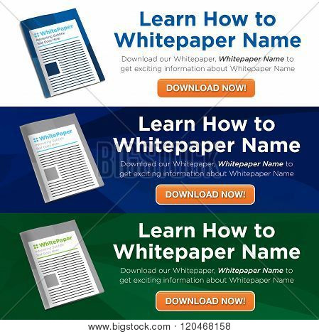 Whitepaper or Ebook Graphics with Replaceable Title, Cover, and CTAs with Call to Action Buttons