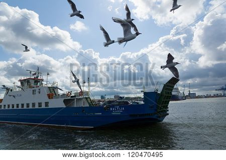 Ferry And Seagulls