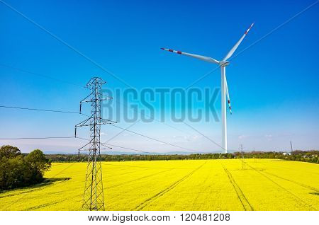 Windmill and Powerlines On Colza Field