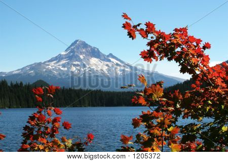 Finding Autumn At Lost Lake