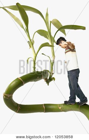Young man balancing on a giant plant