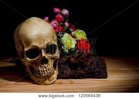 Dark and shadowy human skull in a pool of light and dark background